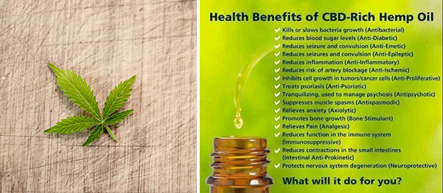 Hemp Care Co - Hemp Care Products