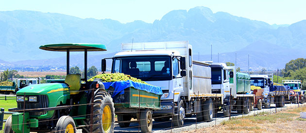 Worcester Wine and Olive Route - Businesses in South Africa